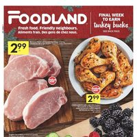 Foodland - Weekly Specials - Shop Early For The Holidays Flyer