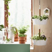 IKEA: 20% Off All Plant Pots Until May 19